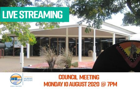 Live Streaming COUNCIL meeting 10 August 2020 website