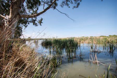 Murrundi Reserve View
