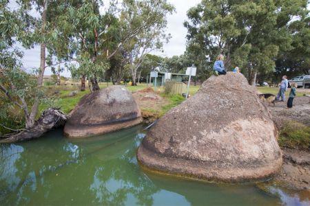 Swanport Reserve Foreshore